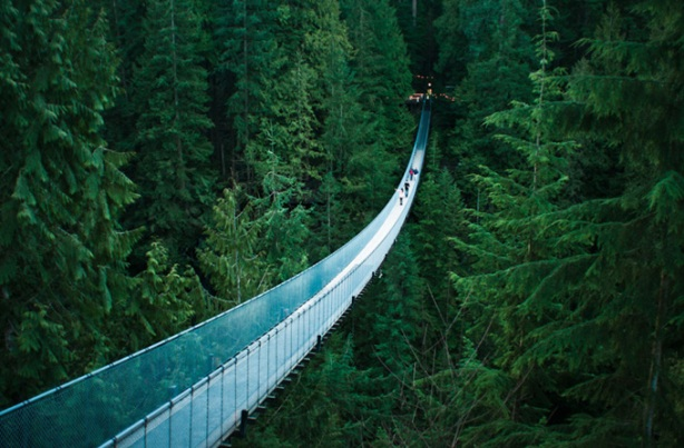 Most Amazing Pictures - Capilano Suspension Bridge, Vancouver, British Columbia